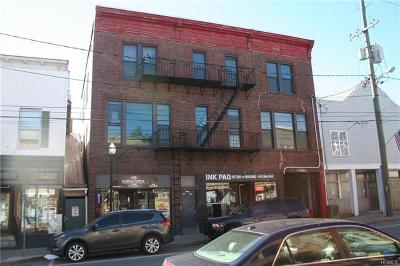 Sullivan County Commercial For Sale: 36 South Main Street