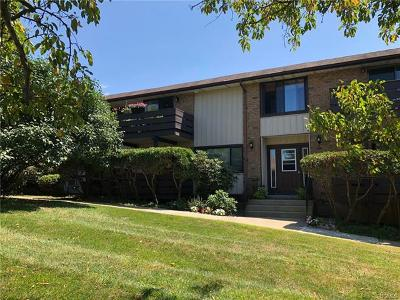Rockland County Condo/Townhouse For Sale: 166 Sierra Vista Lane