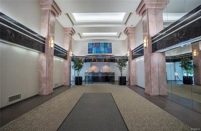 White Plains Rental For Rent: 4 Martine Avenue #606