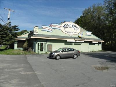 Sullivan County Commercial For Sale: 7126 Old Route 17