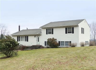 Montgomery Single Family Home For Sale: 214 North Kaisertown Road
