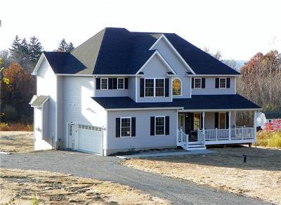 Wappingers Falls Single Family Home For Sale: 154 All Angels Hill Road