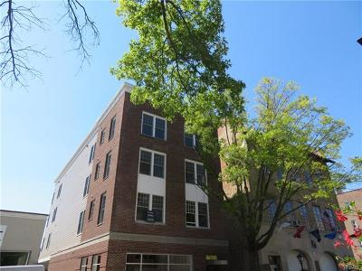 Pelham Rental For Rent: 215 5th Avenue #2F