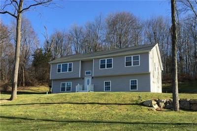 Dutchess County Single Family Home For Sale: 37 Robert Road