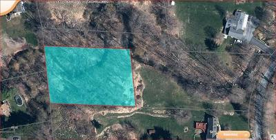 Warwick Residential Lots & Land For Sale: Wawayanda Road