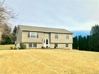 Wingdale Single Family Home For Sale: 28 Riverdale Drive
