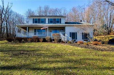 Chester Single Family Home For Sale: 44 Kato Court