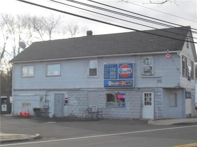 Congers Commercial For Sale: 65 Lake Road