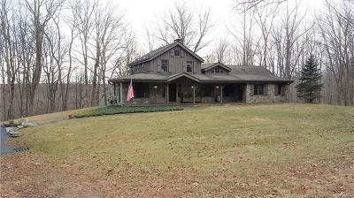 Single Family Home For Sale: 1110 Mountain Road