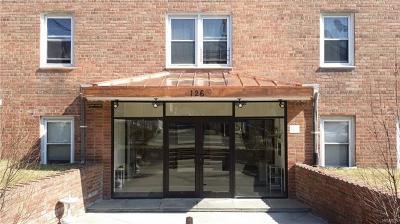 New Rochelle Rental For Rent: 126 Franklin Avenue #4G