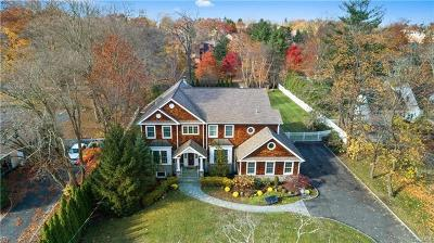 Rye Brook Single Family Home For Sale: 55 Hillandale Road