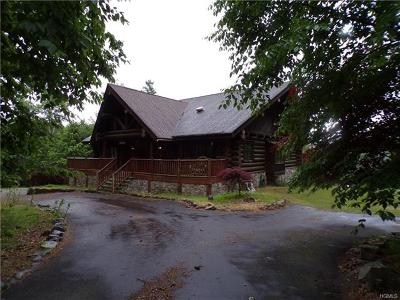 Sullivan County Single Family Home For Sale: 11 Caskey Road