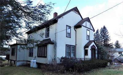 South Fallsburg NY Single Family Home For Sale: $129,999