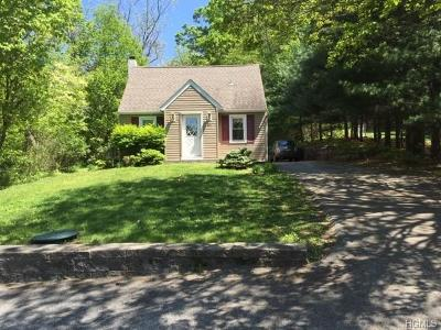 Highland Mills Single Family Home For Sale: 31 Mineral Springs Road
