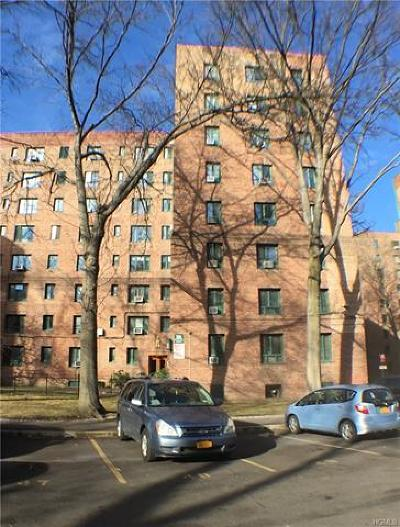 Bronx County Condo/Townhouse For Sale: 2120 East Tremont Avenue #6H