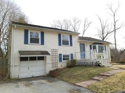 Dutchess County Single Family Home For Sale: 125 Titusville Road
