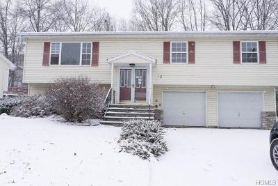 Maybrook Single Family Home For Sale: 10 Ted Miller Drive