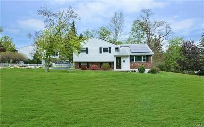 Rockland County Single Family Home For Sale: 265 Rose Road