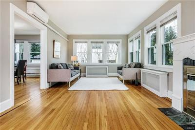 Scarsdale Single Family Home For Sale: 17 Mount Joy Avenue