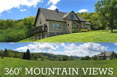 Delaware County Single Family Home For Sale: 1563 Tower Mountain Road