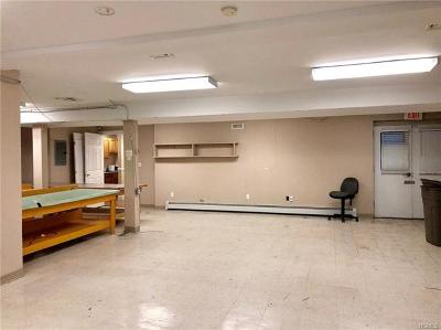 Warwick Commercial For Sale: 72 South Street