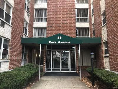 Rockland County Condo/Townhouse For Sale: 35 Park Avenue #2E