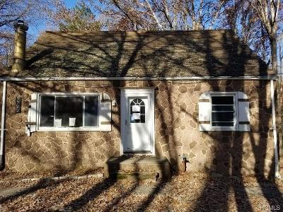 Orange County Single Family Home For Sale: 465 Old Dutch Hollow Road