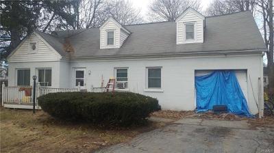 Dutchess County Single Family Home For Sale: 3 Haviland Road