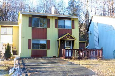 Kiamesha Lake NY Single Family Home For Sale: $57,000