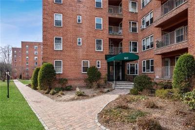 Hastings-On-Hudson Condo/Townhouse For Sale: 565 Broadway #1F