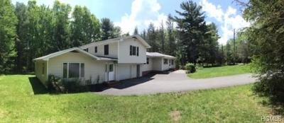 Sullivan County Single Family Home For Sale: 446 High Road