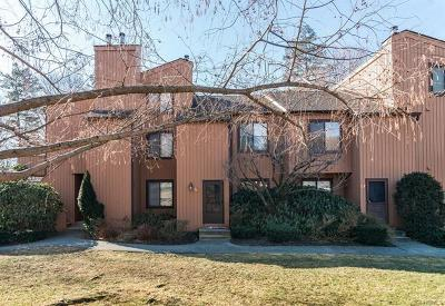 Ossining Condo/Townhouse For Sale: 56 Hudson View Hill