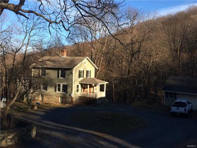 Cornwall On Hudson Single Family Home For Sale: 131 Mountain Road