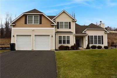 Orange County Single Family Home For Sale: 55 Catskill High Rail