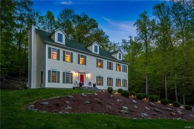 Westchester County Single Family Home For Sale: 27 Little Lakes Run