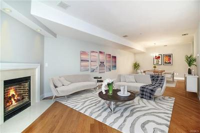 Westchester County Rental For Rent: 257 Central Avenue #1D