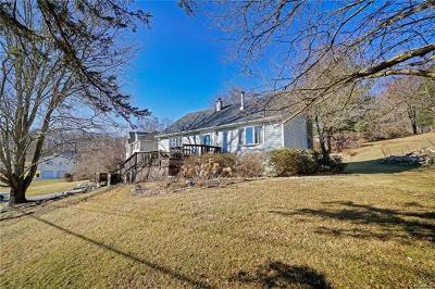 Putnam County Single Family Home For Sale: 24 Vineland Road