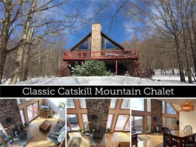 Delaware County Single Family Home For Sale: 440 Red Kill Mountain Road