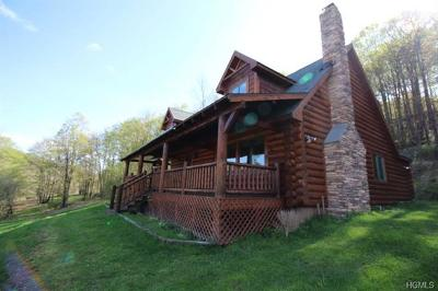 Sullivan County Single Family Home For Sale: 26 Wegman Road