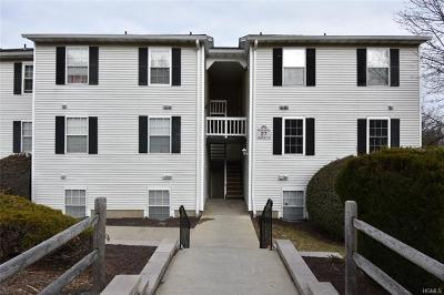 Orange County Condo/Townhouse For Sale: 27 Lexington Hill #3