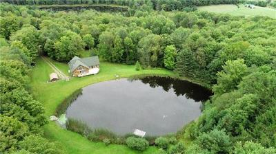 Delaware County Single Family Home For Sale: 3349 Freer Hollow Road