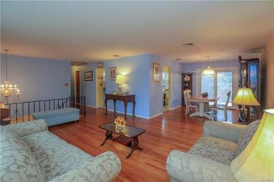 Rockland County Single Family Home For Sale: 28 Locust Street