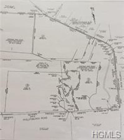 Dutchess County, Orange County, Sullivan County, Ulster County Residential Lots & Land For Sale: Hampton Road