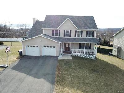 Newburgh Single Family Home For Sale: 12 Bannerman View Drive
