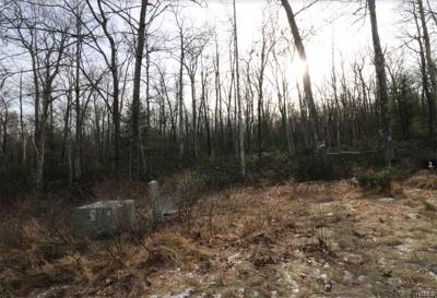 Residential Lots & Land For Sale: Pine Lake Drive