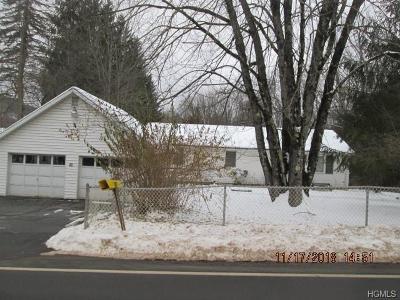 Livingston Manor, Roscoe Single Family Home For Sale: 49 Beaverkill Road