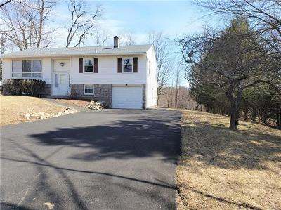 Putnam County Single Family Home For Sale: 20 Hamlin Road