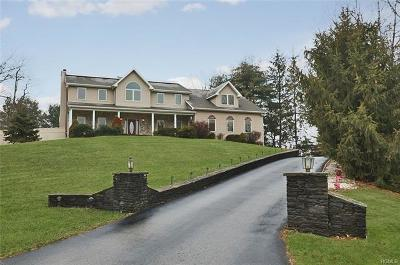 Dutchess County, Orange County, Sullivan County, Ulster County Single Family Home For Sale: 18 Tanglewood Lane