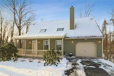 Dutchess County, Orange County, Sullivan County, Ulster County Single Family Home For Sale: 113 Brothers Road