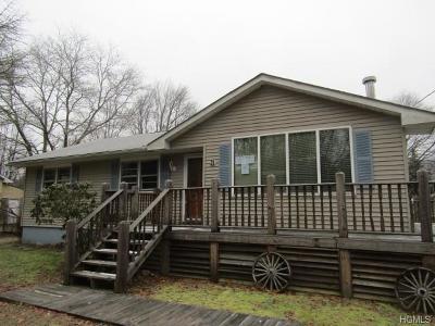 Dutchess County, Orange County, Sullivan County, Ulster County Single Family Home For Sale: 31 Apple Lane